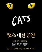 뮤지컬 캣츠 오리지널 투어 - 전주